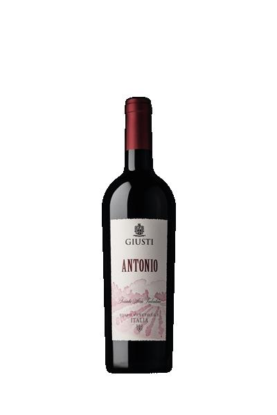 君帝酒莊 安東尼紅酒- Giusti Wine
